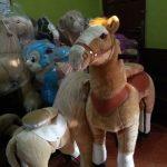 Jual Kuda Gowes pony cycle di Jambi hubungi 085782537035