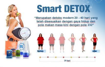 Jual Smart Detox Plus Synergy di Dharmasraya Hubungi 085782537035