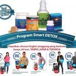 Agen Smart Detox Plus Synergy di Teluk Bintuni Hubungi 085782537035
